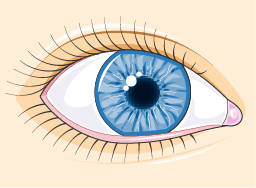 öga rinnande ögon tårsekretion